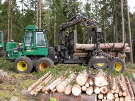 Bosbouw: Nederhout is geen brandhout