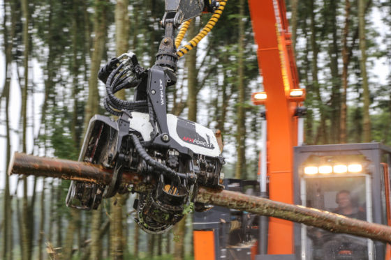 De AFM 45-velkop is volledig computergestuurd. Een volwaardige bosbouwmachine die nu niet aan eenspeciaalbouw'harvester' hangt, maar aan een rupsgraafmachine. En dat is bijzonder.